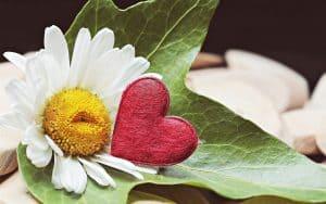 Gift, gratitude, marriage